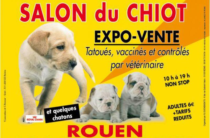 Mobilier table salon du chien rouen for Salon du chien et chat