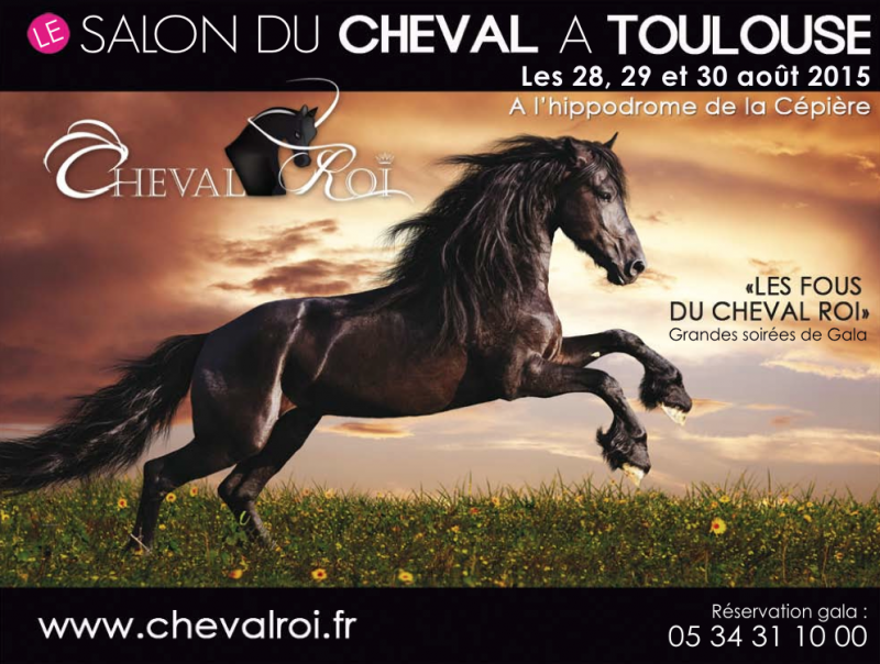 Salon du cheval de toulouse for Hippodrome de salon
