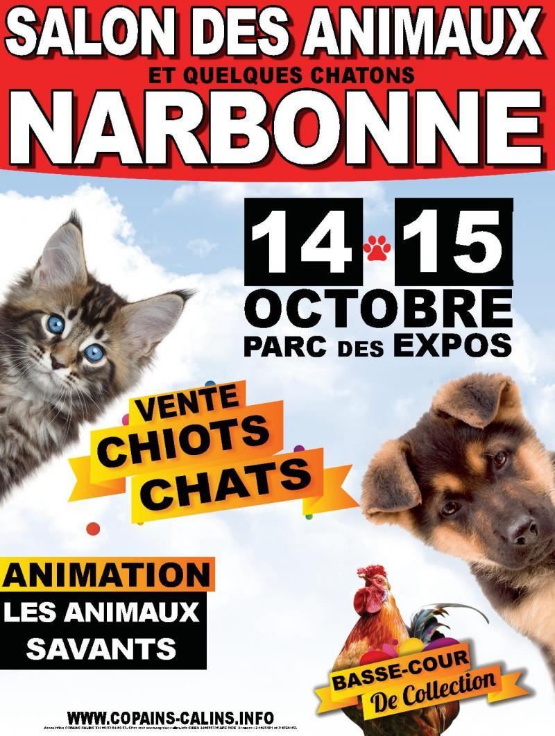 Salon du chiot et du chaton narbonne - Salon du chiot et du chaton ...